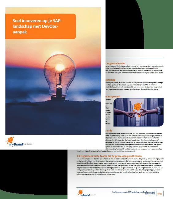 DevOps whitepaper download SAP ERP